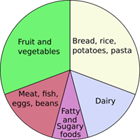 Image of the five different food groups